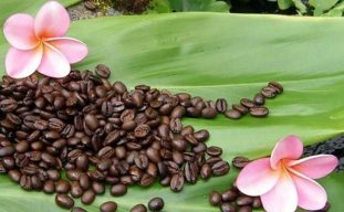 Hawaiian Coffee