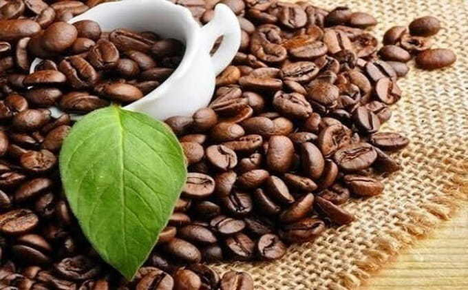 How Much Coffee Beans Can You Eat Safely