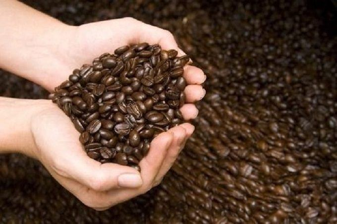 How is this Coffee Roasted