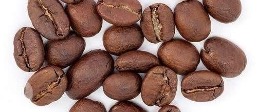 Kenyan AA Coffee Bean