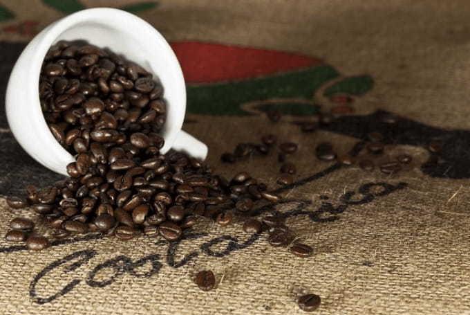 Major Coffee Growing Regions