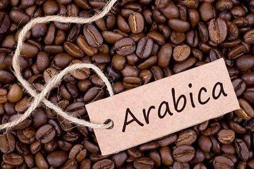 Use Arabica Beans