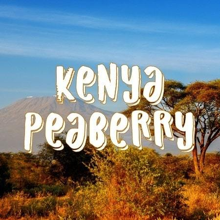 Volcanica Coffee Peaberry Kenyan Coffee